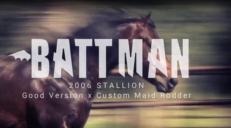 JoanLogan-Battman-video